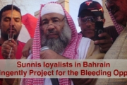 Sunnis loyalists in Bahrain: A Contingently Project for the Bleeding Opposition